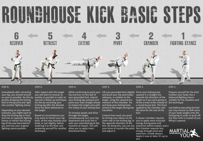 roundhouse-kick-guide-1200x833